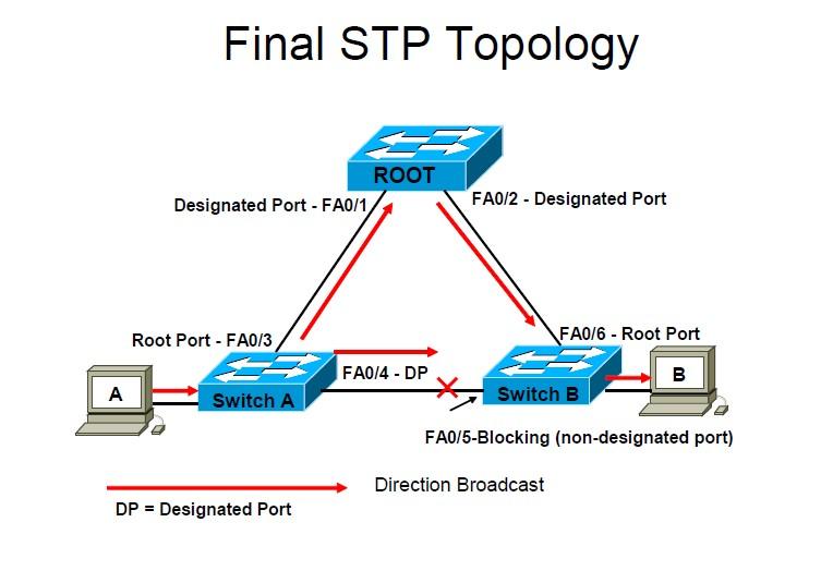 designated-port-rootport-stp-selected-blocked